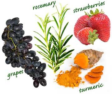 がんに効く食べ物4種